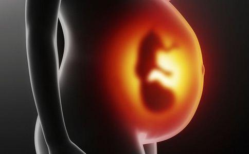 怀孕14周症状 怀孕14周胎儿发育图 怀孕14周注意事项