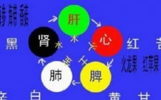中医 五脏排毒调养方法_中医常识_中医_99健康网