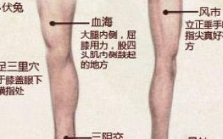 女人必学 保养卵巢的7大穴位_女人养生_中医_99健康网