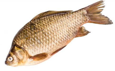 鱼的秘密 哪些人群不适合吃鱼