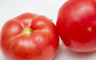 警惕夏季不能久放冰箱的食物_夏季饮食_饮食_99健康网