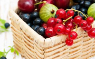 腹部赘肉太多?常吃这三种水果身材好_美容食谱_女性_99健康网