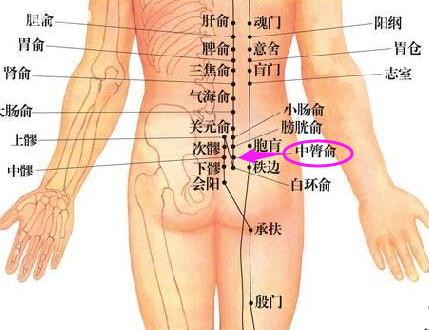 中膂俞穴位的准确位置图