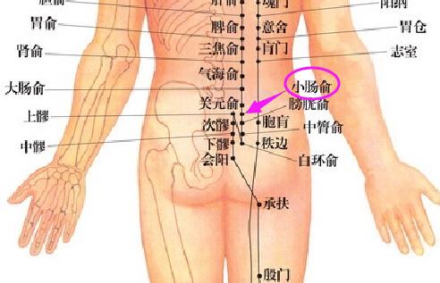 小肠俞穴位的准确位置图