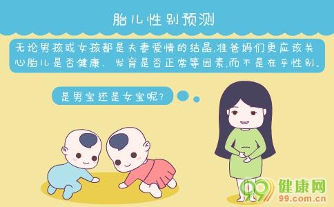 胎儿性别预测 如何预测胎儿性别 怎样预测胎儿性别