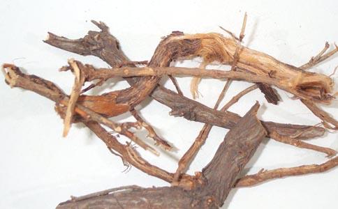 麻黄根的功效 麻黄根的作用 麻黄根