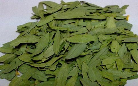 番泻叶的功效 番泻叶的作用 番泻叶
