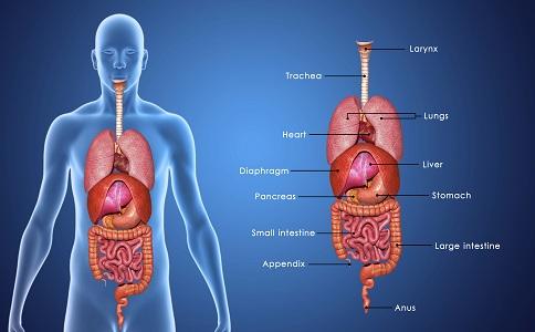 十二指肠溃疡 十二指肠溃疡的危害 十二指肠溃疡的病发特点