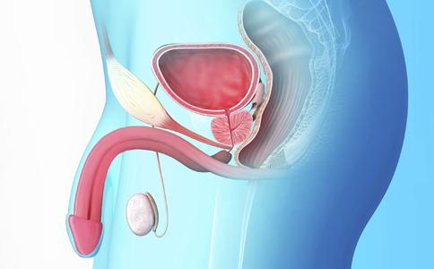 陰莖勃起彎曲是怎麼回事 為什麼陰莖勃起會彎曲 陰莖彎曲要治療嗎