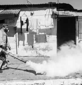寨卡疫情最新消息:巴西寨卡疫情比想象的更严重
