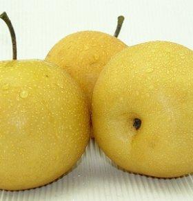 餐后吃梨可防癌 喝梨汁的九大好处