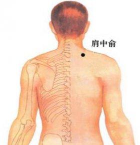 肩中俞穴位的准确位置图 肩中俞在哪里 肩中俞的具体位置