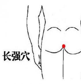 长强穴位的准确位置图 长强穴在哪里 长强穴的功效与作用