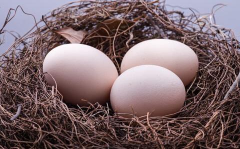 鸡蛋 健康 这么 天天 蛋白质 维生素 温度 消化 加热 包蛋 黄中