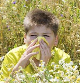 春季花粉过敏高峰期该如何预防