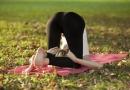 蕙兰瑜伽健康瑜伽减肥 :臀型腿线再塑