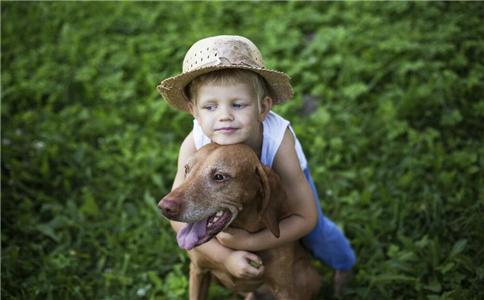 养宠物的坏处英语_养宠物能降血压?宠物能给健康带来4大好处_百姓民生_新闻_99健康网
