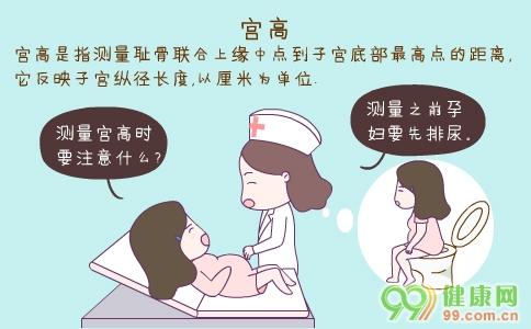 宫高偏高怎么办   宫高是用来判断胎儿生长发育状