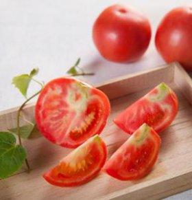 小番茄营养又健康 孕妈妈可常吃