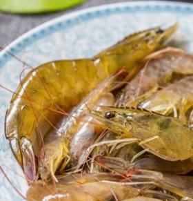 孕妇能吃皮皮虾吗 食用时该注意哪些问题