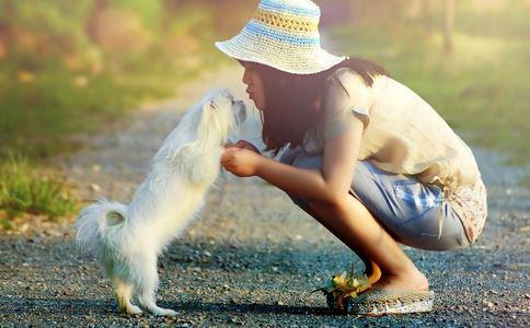 夏季如何养狗 夏季养狗要注意什么 如何给狗洗澡