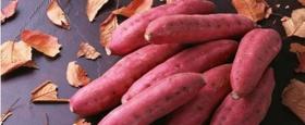 抗癌食物大盘点:能杀死癌细胞的7大食物