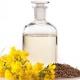 菜籽油可以减肥吗 菜籽油的热量