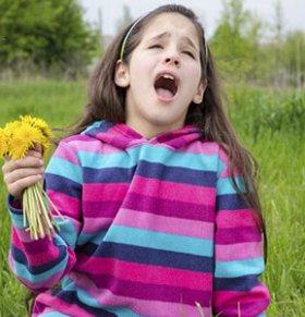 花粉过敏是什么 花粉过敏如何治疗