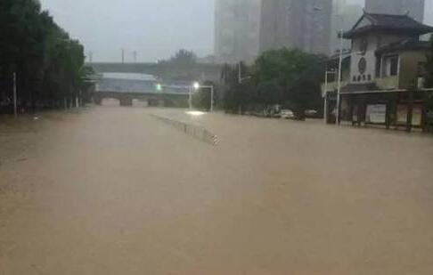 武汉特大洪水 武汉发生特大洪水 遭遇洪水如何自救
