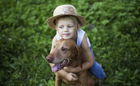 孩子被宠物咬伤怎么办 被宠物咬伤了怎么办 被宠物咬伤了如何处理