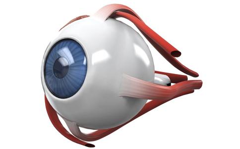 青光眼早期症状不明显 教你如何诊断