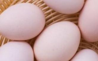 好吃又营养 经常吃鸡蛋的5个好处