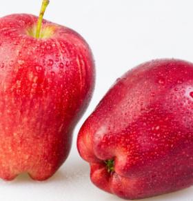一日一苹果 健康又长寿