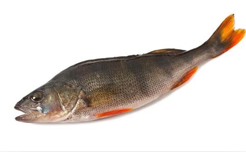 鲟鳇鱼籽的做法_鲟鳇鱼籽的营养价值_东北松子的营养价值_乌鸡凤尾蘑菜营养价值 ...