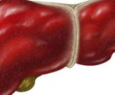 怎么预防肝病 预防肝病的方法 全国爱肝日