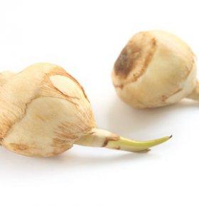 慈菇可以减肥吗 慈菇的热量高吗 慈菇的营养价值