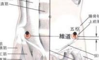 维道穴的功效与作用 按摩维道穴的作用 维道穴穴位配伍