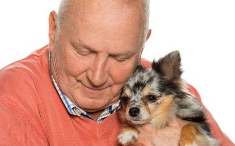 养宠物的坏处英语_老人养什么样的狗才好 三类狗最适合_老人生活_老人_99健康网