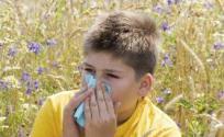 中医治疗鼻炎的偏方 鼻炎怎么治疗 治疗鼻炎的偏方