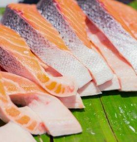 三文鱼可以减肥吗 三文鱼的热量高吗 三文鱼的营养价值
