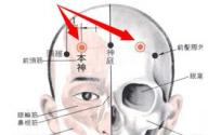 本神穴的功效与作用 本神穴的作用 按摩本神穴的作用
