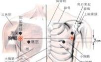 胸乡穴的功效与作用 按摩胸乡穴的作用 胸乡穴的准确位置图