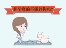 怀孕真的不能养狗吗