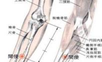 间使穴的功效与作用 按摩间使穴的作用 间使穴的准确位置图