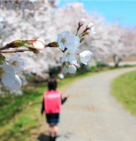 立春有什么风俗 立春如何养生 立春的养生方法
