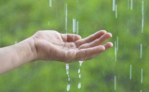 雨水如何养生 雨水节气如何养生 雨水时节养生方法