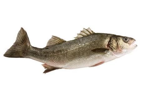 春季吃鱼有什么好处 春季吃什么吃鱼好 春季吃鱼的好处有哪些
