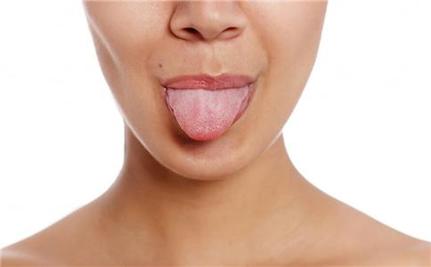舌头结构及功能图