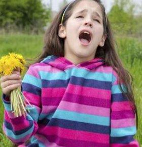 花粉过敏 春季必防五大皮肤过敏原因