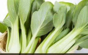 给宝宝吃蔬菜 家长要避开这10种错误